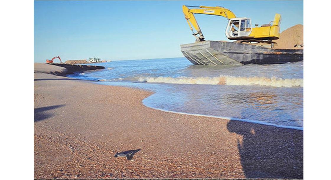 Een baby-zeeschildpad te Braamspunt met op de achtergrond zandafgravers. Foto: Surinaams Nieuws