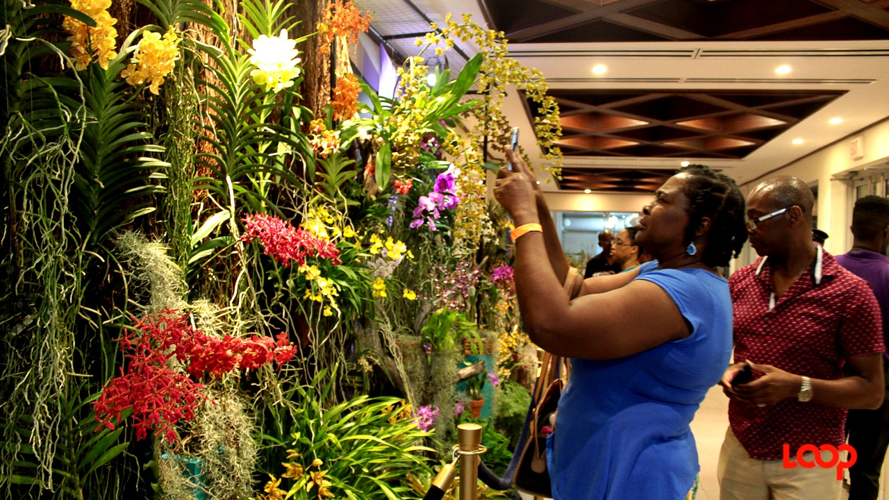 Patrons admire the exhibits at the WAFA 12th World Flower Show, 'Flowers in Paradise', at the Lloyd Erskine Sandiford Centre.