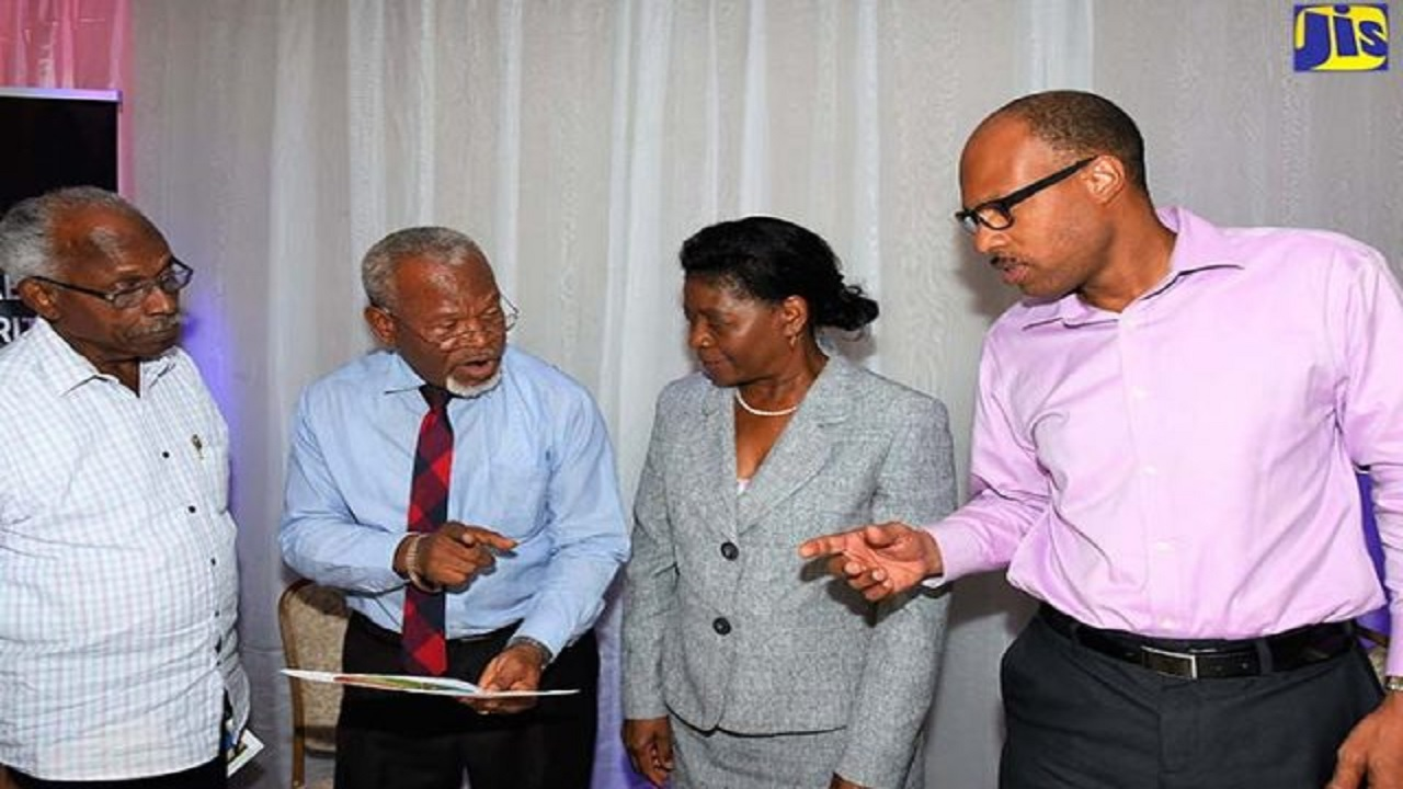 Chairman of the Minimum Wage Advisory Commission, Silvera Castro (2nd left), makes a point to Commission member, St Patrice Ennis (4th left), at a regional consultation held on July 4, at Hotel Tim Bamboo, in Portland. Listening (from left) are hotelier Hugh Perry, and member of the Commission, Bernita Locke. (PHOTO: JIS)