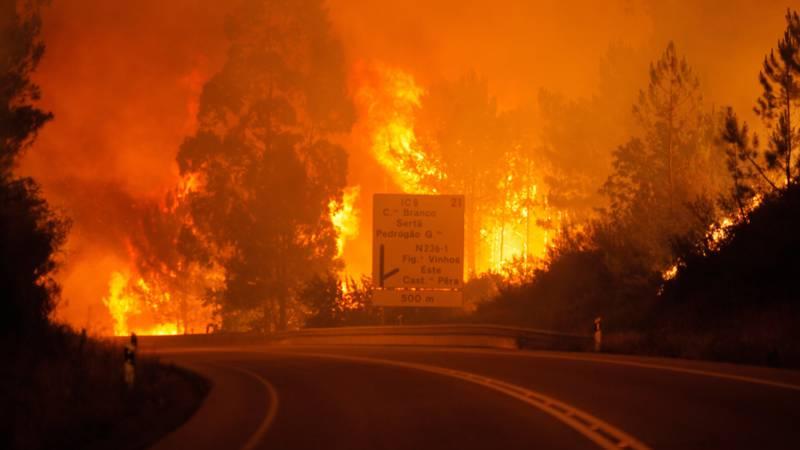 De branden woedden onder meer op de eilanden Kreta en Zakynthos, en in de buurt Porto Rafti bij Athene.