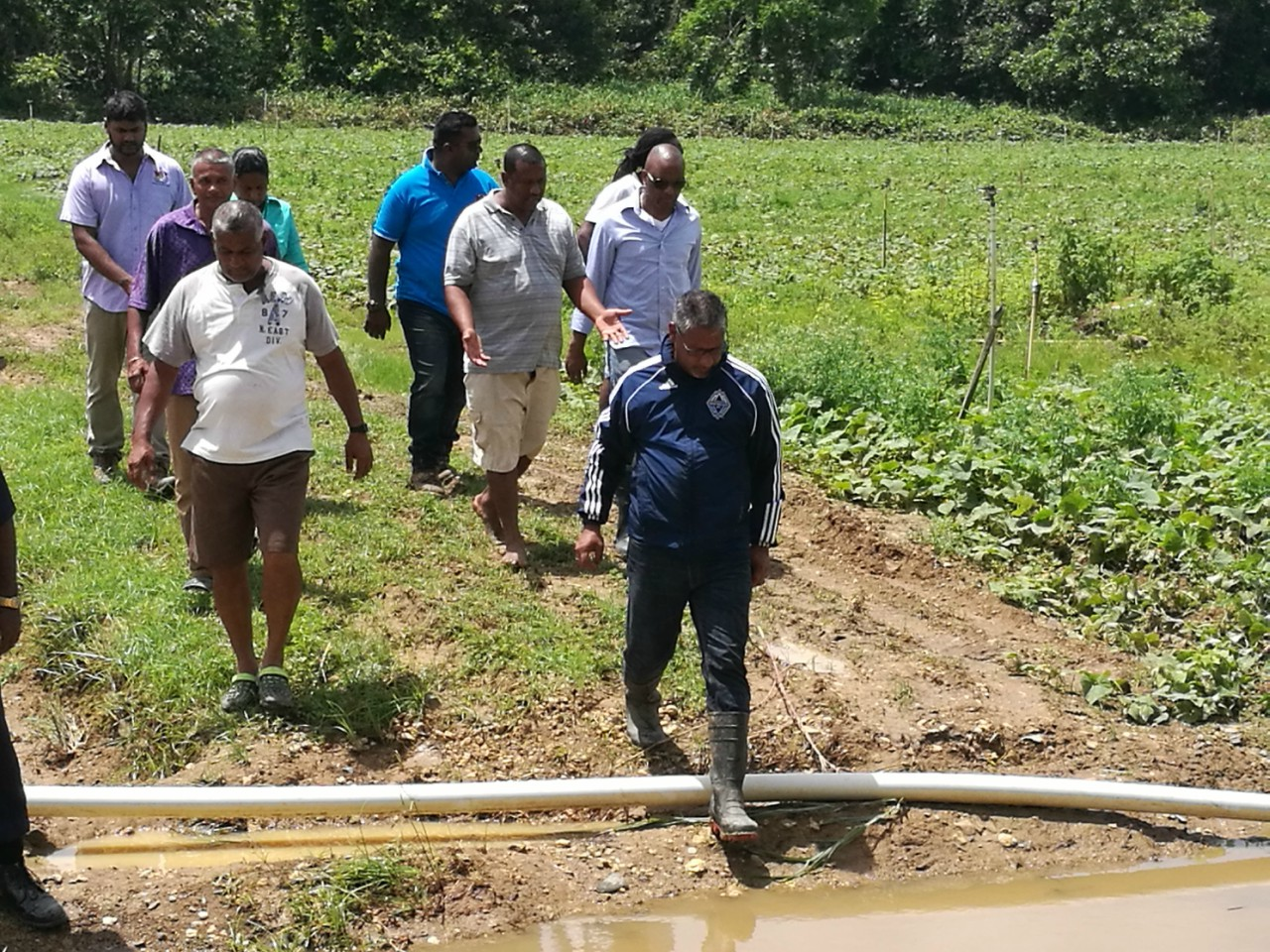 Agriculture Minister Clarence Rambharat tours farms post Bret