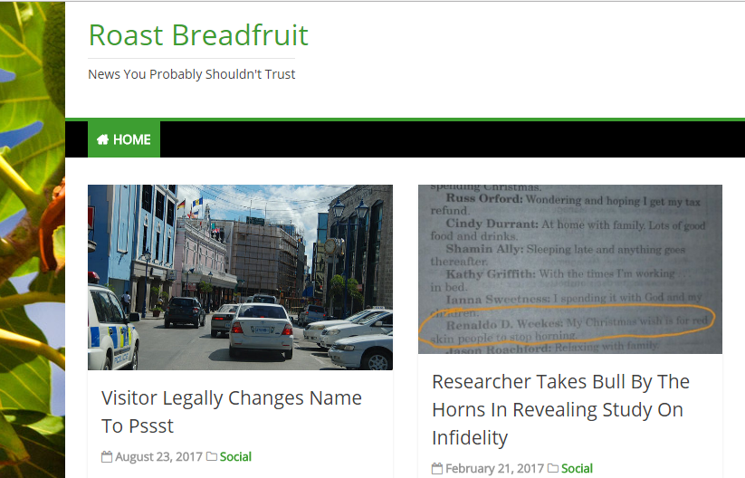 A screengrab from the Roast Breadfruit website.