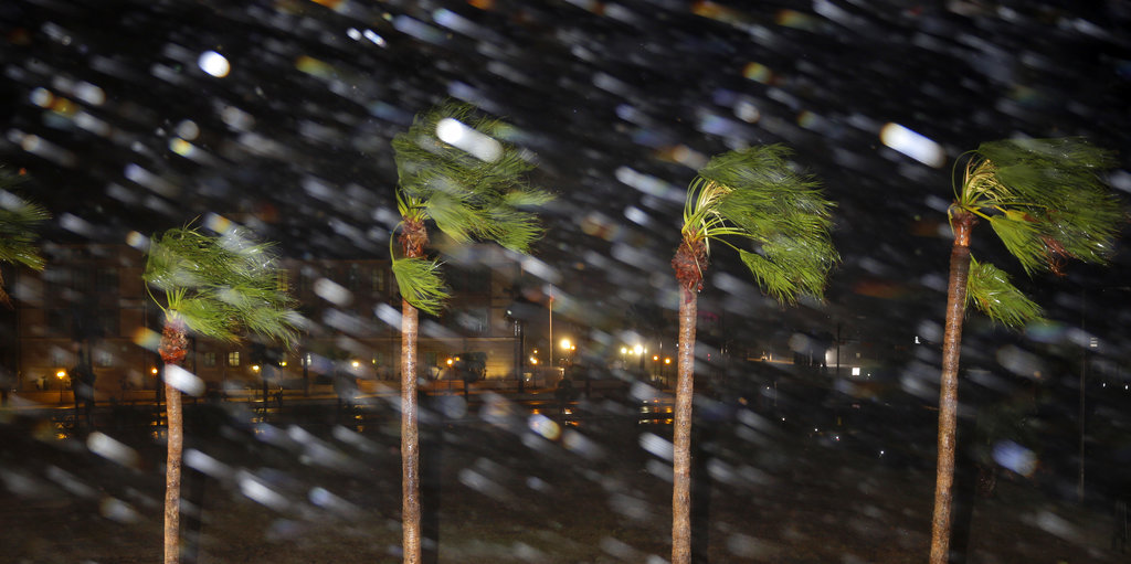 Rain is blown past palm trees as Hurricane Harvey makes landfall, Friday, Aug. 25, 2017, in Corpus Christi, Texas. (AP Photo/Eric Gay)