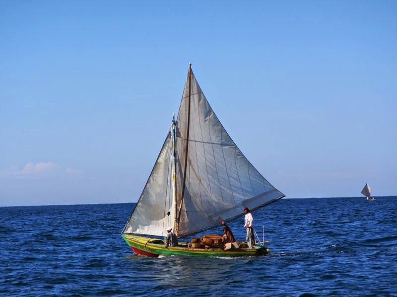 Un voilier voguant sur la mer en direction de l'Ile à Vache. Crédit photo : Océana 1