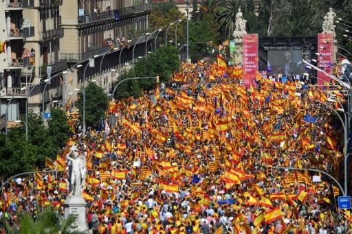 Les manifestants écoutent l'écrivain Mario Vargas Llosa lors d'un rassemblement à Barcelone en faveur de l'unité de l'Espagne le 8 octobre 2017. AFP / LLUIS GENE