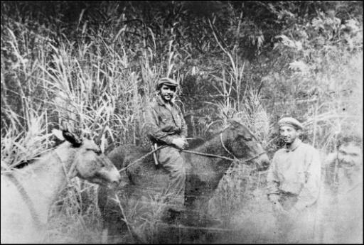 """Photo prise en 1967 d'Ernesto """"Che"""" Guevara près de Ñancahuazú au sud-est de la Bolivie"""