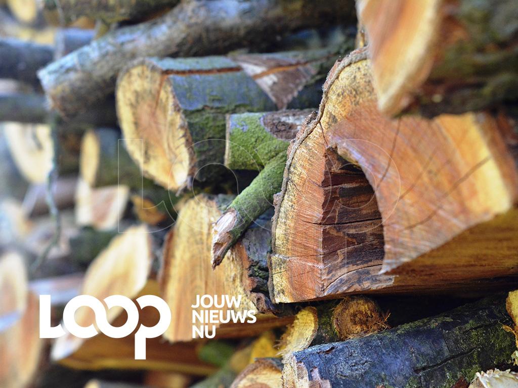 Een partij houtblokken zou een boomstam hebben geramd, waardoor de boom omviel en op het hoofd van het slachtoffer terecht kwam.
