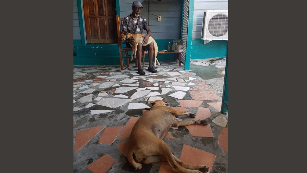 (Photo: Tobagonian Errol Thomas mourns the loss of his dogs, which were cruelly poisoned while contained in his yard. Photo courtesy the Tobago shelter of the TTSPCA.)