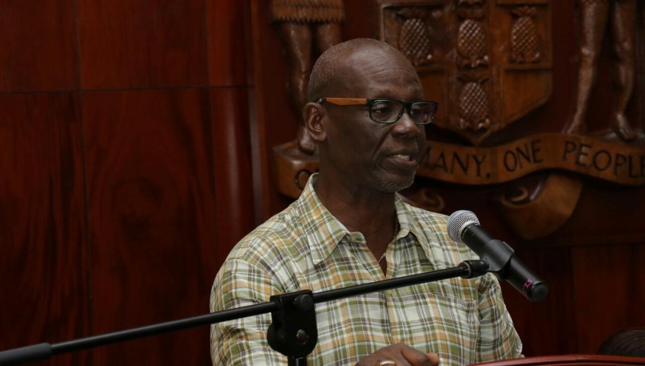 Local Government Minister, Desmond McKenzie