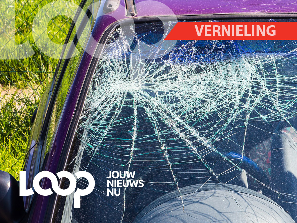 Onderzoek wees uit dat Ortwin in een boze bui de achterruit van een auto, die op de berm geparkeerd stond, had vernield.