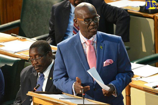 West Kingston Member of Parliament, Desmond McKenzie