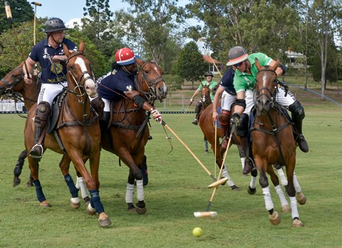 L'équipe Polo d'Haiti lors de la compétition internationale de Polo qui s'est déroulée en Australie vendredi 15 décembre./Photo: Haiti Team Polo