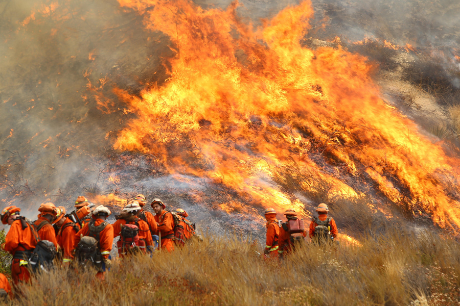 De bestrijders van het vuur hebben niet kunnen voorkomen dat inmiddels ongeveer 800 huizen en gebouwen in de as zijn gelegd. Er is al 93.000 hectare aan natuur verloren.