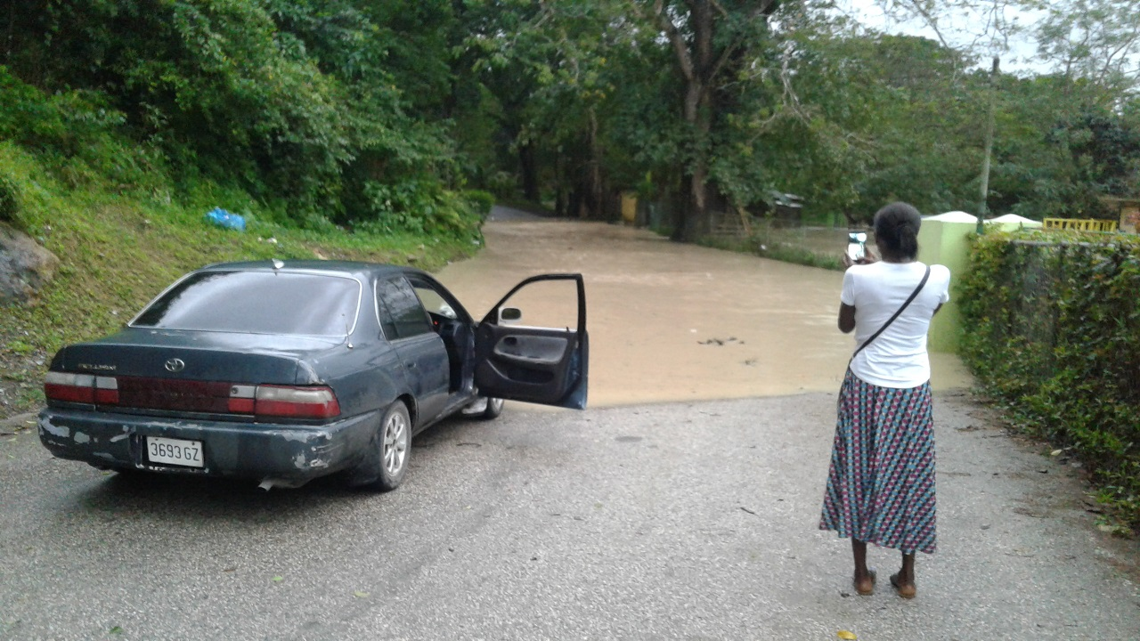 A woman takes a photo of a pool of water on the Martha Brae road leading to Duanvale in Trelawny.