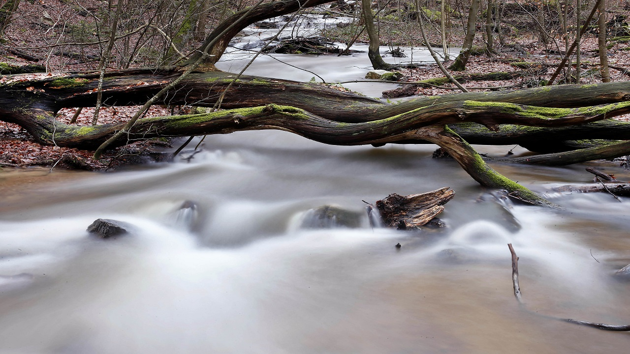 An originally small creek is filled with water from the melting snow in the Taunus mountains near Frankfurt, Germany, Thursday, Jan. 4, 2018.