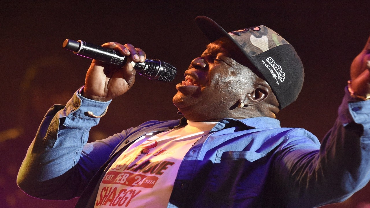 Barrington Levy performs at the Shaggy & Friends benefit concert on Sunday morning. (PHOTO: Marlon Reid)
