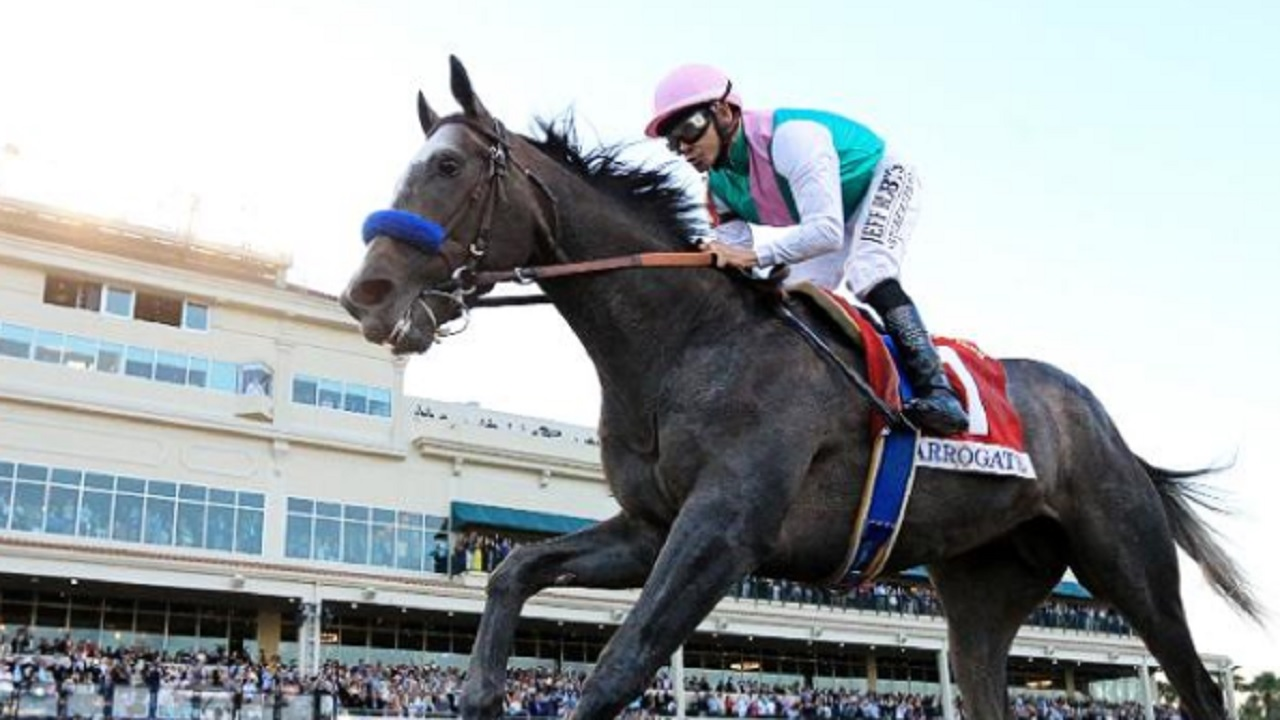 American colt Arrogate crowned world's best racehorse