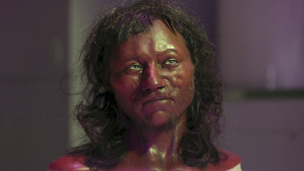(Image: AP: Reconstruction model of a head based on the skull of Britain's oldest complete skeleton)