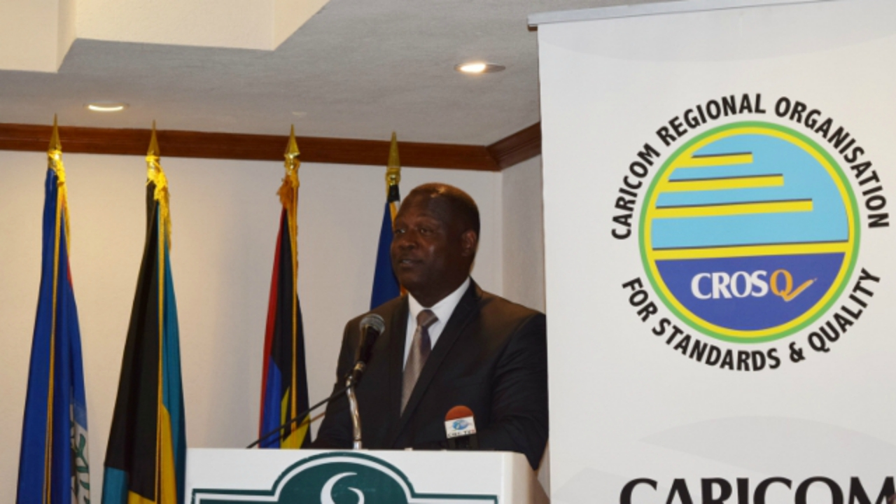 Minister of Industry, International Business, Commerce and Small Business Development, Donville Inniss.