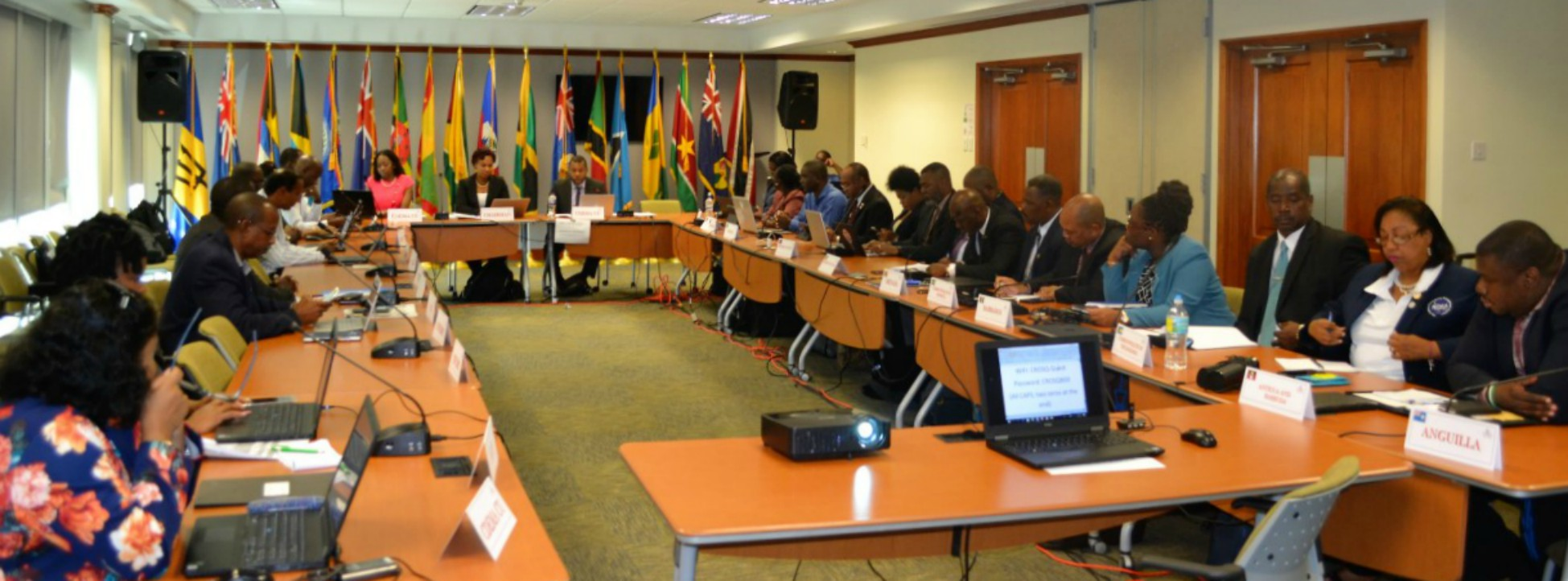 Technical Advisory Committee of CDEMA during their roundtable discussions.