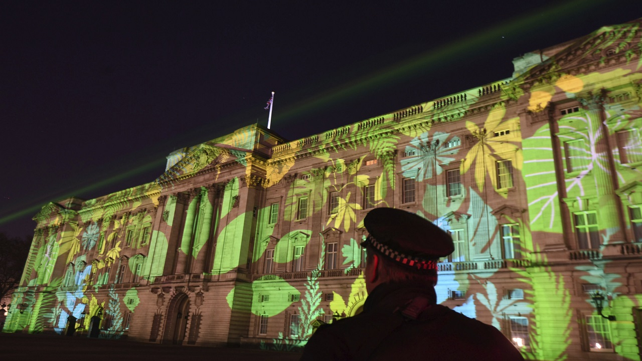(Image: AP: A rainforest design is projected onto Buckingham Palace in London on 15 April 2018 as part of the Queen's Commonwealth Canopy project ahead of the Commonwealth summit this week)