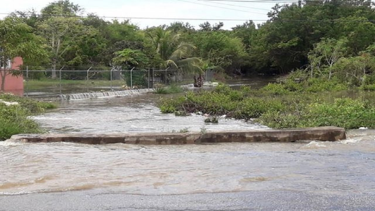 A section of McNeil Lands in Bayroad, Westmoreland, inundated with water following heavy rainfall on May 6. (PHOTO: JIS)