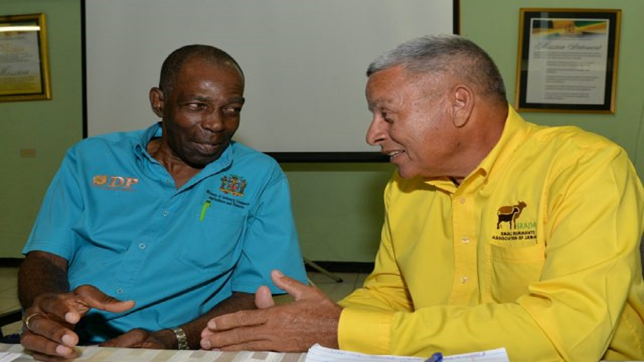 Minister without Portfolio in the Ministry of Industry, Commerce, Agriculture and Fisheries, JC Hutchinson (left), is in conversation with former President of the Small Ruminants Association of Jamaica, Kenneth King, at the organisation's 21st Annual General Meeting on Thursday at the Bodles Research Station in Old Harbour, St Catherine.