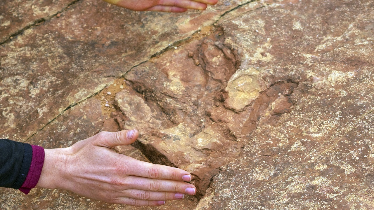 (Image: AP: Visitors examine dinosaur tracks at the Red Fleet State Park)