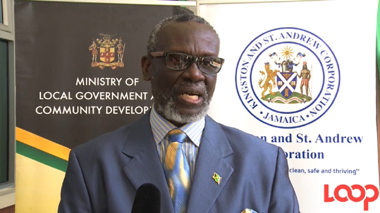 Local Government Minister, Desmond McKenzie.