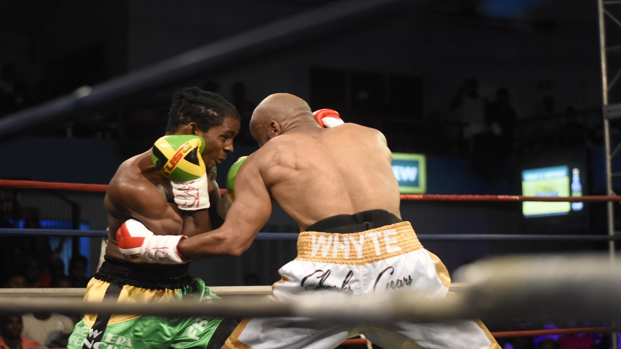 Canadian  Larone White (right) attacks the body of Jamaica's Richard 'Frog' Holmes in their quarter-final bout of Season 8 of the Wray & Nephew Contender welterweight boxing series, at the Chinese Benevolent Association on Wednesday night. (PHOTO: Marlon Reid).