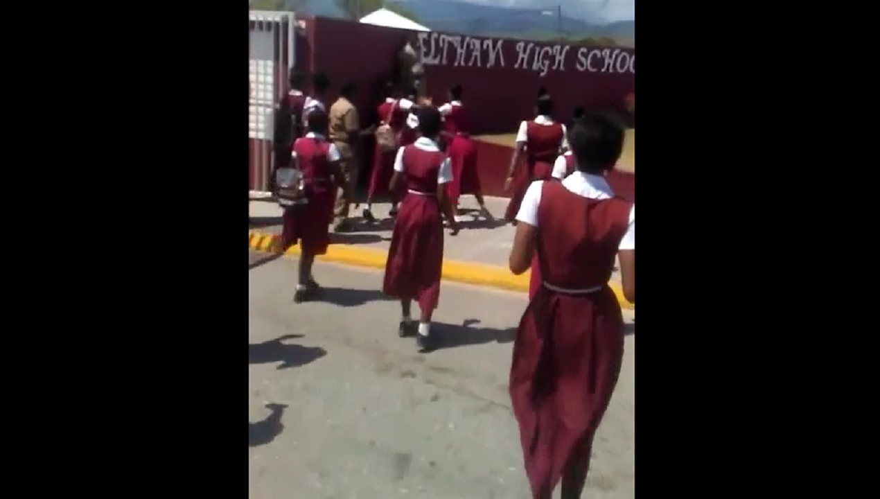 Screenshot of a video showing two students fighting in front of the Eltham High School in St Catherine.