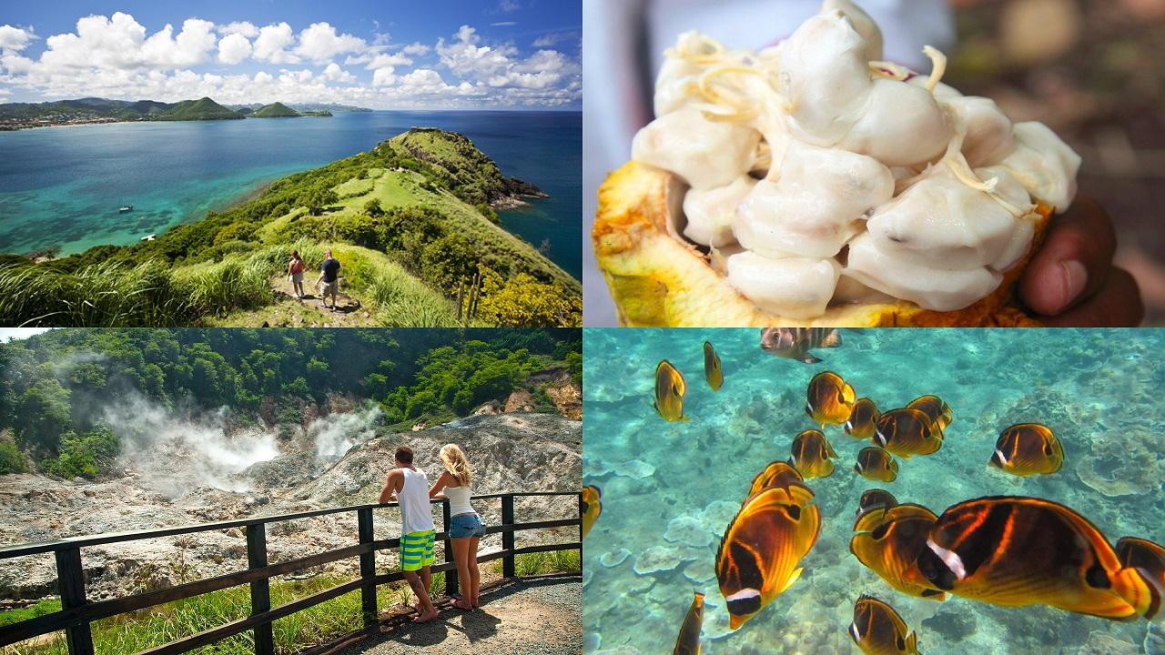 (Images, clockwise from top left: Pigeon Island via St Lucia Tourist Board; Cocoa pod via Hotel Chocolat; snorkeling; Soufriere Volcano via St Lucia Tourist Board)