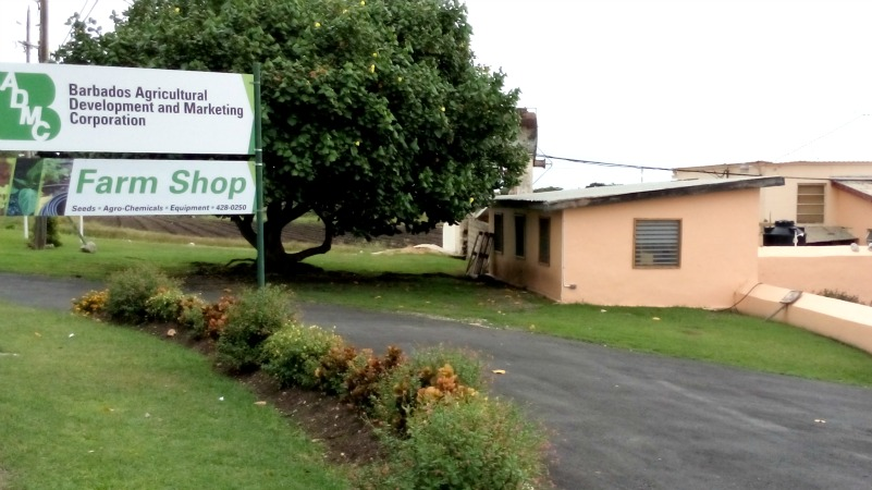BADMC Frere Pilgrim office (FILE)