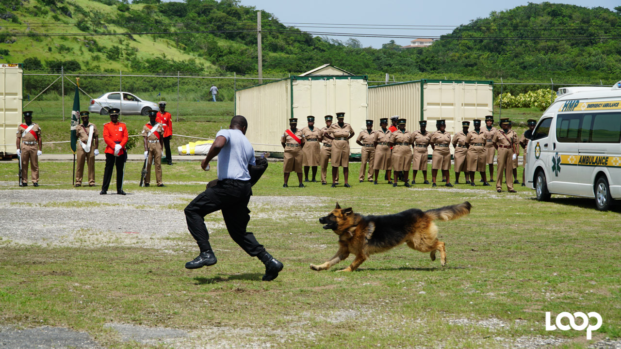 Simulation showing the Canine Unit in action during the 10th anniversary parade and award ceremony. 