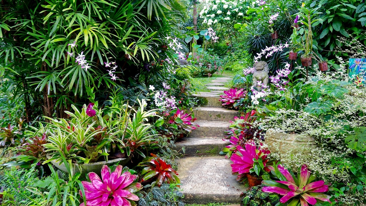 (Image: Hunte's Garden, courtesy of Hunte's Garden)