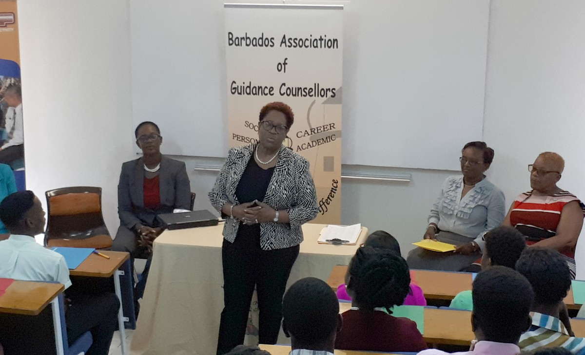 Executive Director of BIMAP, Sonia Griffith-Franklyn (standing), sharing advice with workshop participants.