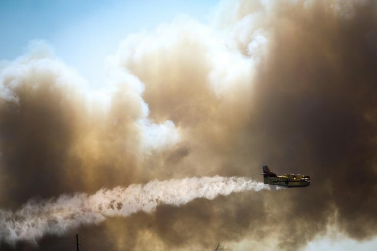 Des eucalyptus et des pins en feu le 8 août 2018 dans l'incendie de forêt près de Monchique dans la région de l'Algarve, sud du Portugal
