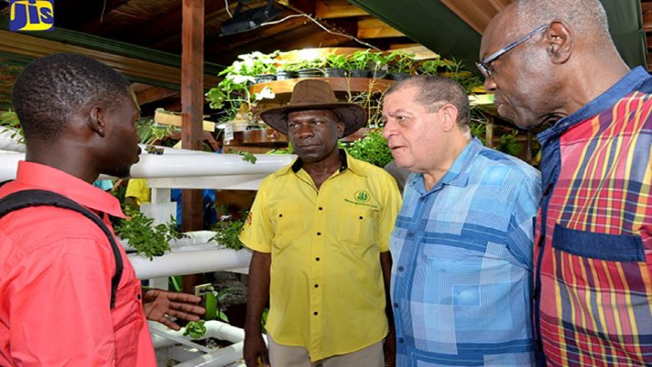 Minister of Industry, Commerce, Agriculture and Fisheries, Audley Shaw (third left), listens to Crops Demonstrator, Ebony Park HEART Academy, Jermain Griffith (left), at the 66th staging of the Denbigh Agricultural, Industrial and Food Show in May Pen, Clarendon on August 4. Also listening are outgoing Jamaica Agricultural Society President, Norman Grant (second left), and Opposition Spokesman on Agriculture and Rural Development, Dr Fenton Ferguson.