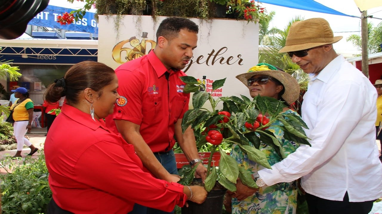 Governor General, Sir Patrick Allen (right) and his wife, Lady Allen, receive a plant from Hi-Pro representatives at Denbigh on Sunday. (PHOTO: Llewellyn Wynter)