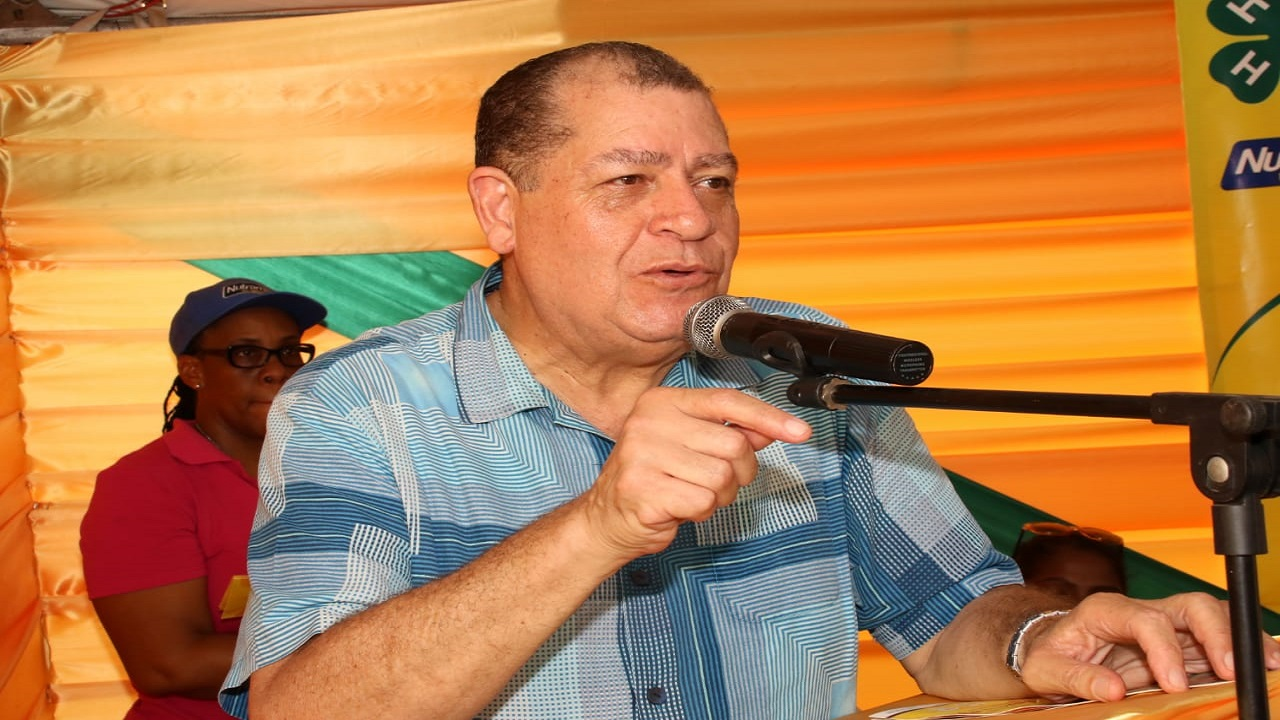 Agriculture and Fisheries Minister, Audley Shaw speaking at the Denbigh Agricultural, Industrial and Food Show in Clarendon on Saturday. (PHOTO: Llewellyn Wynter)