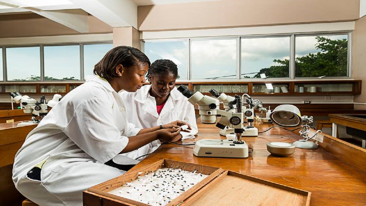 Students at the Department of Life Sciences, Faculty of Science & Technology at UWI, Mona. Photo via UWI, Mona's Facebook page.