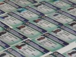A ces 1,406 documents qui ont été saisis, selon le rapport de la DGM, s'ajoutent 19 faux passeports haïtiens, 4 passeports dominicains, 1 carte d'identité haïtienne, 1 permis de travail, 1 permis d'étudiant et 6 permis de résidence expirés.