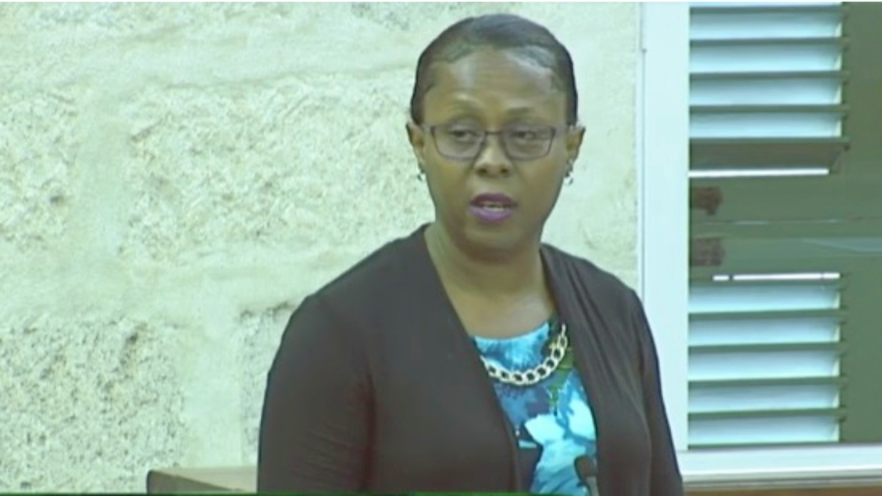 Member of Parliament for St Philip North, Dr Sonia Browne.