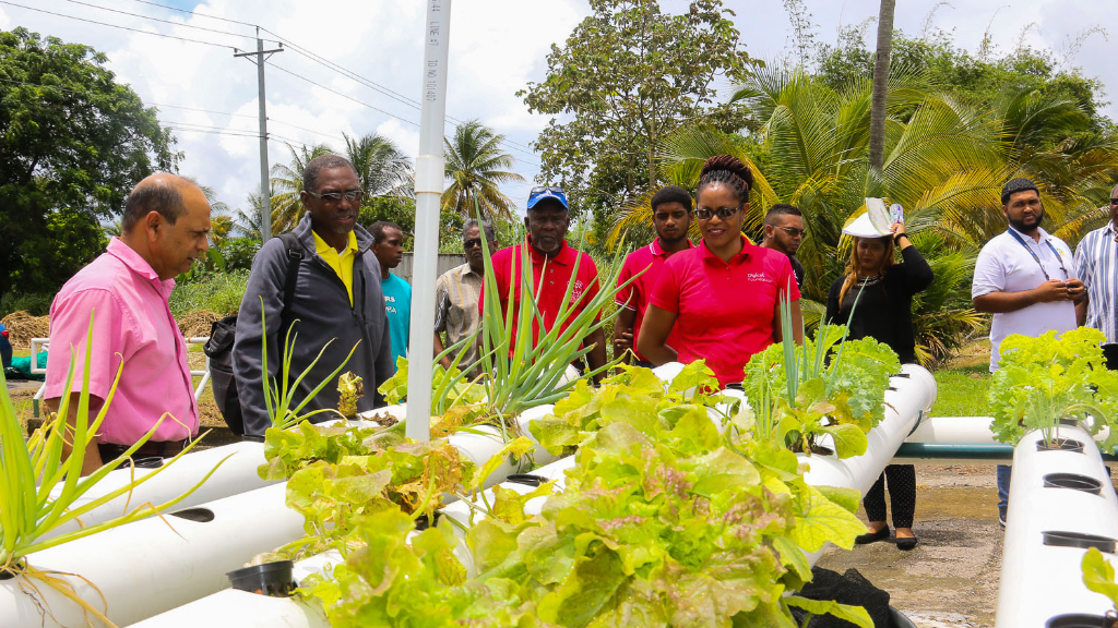 Harrinarine Lalla, Fisheries Officer at the Aquaculture Division of the Ministry of Agriculture, Land and Fisheries (left) with Alicia Hospedales, Strategic Project Officer, Digicel Foundation (centre) and participants look at the produce of the aquaponic systems