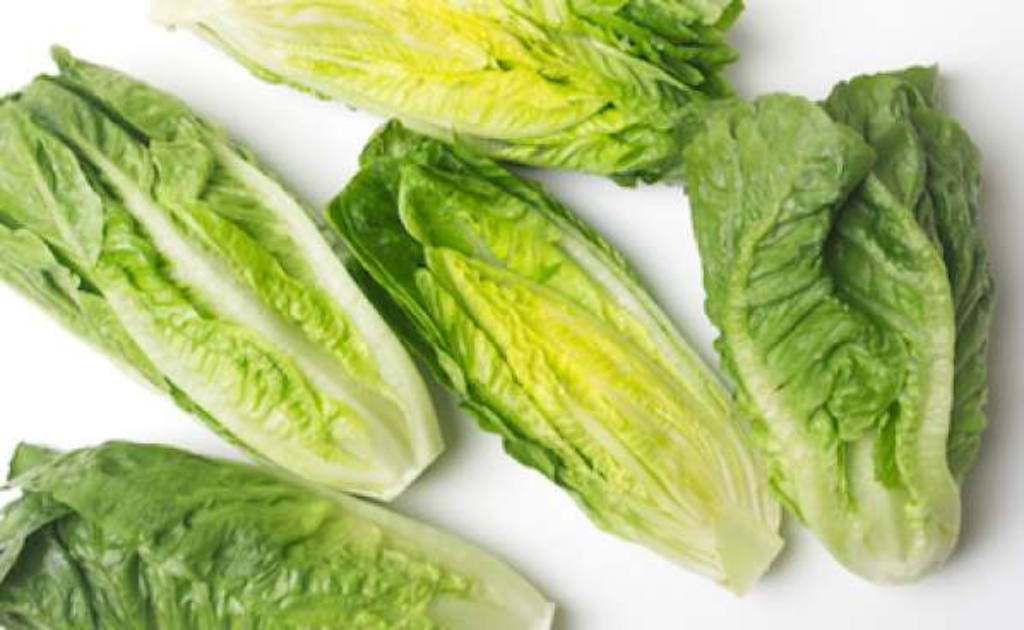U.S. issues health alert on romaine lettuce