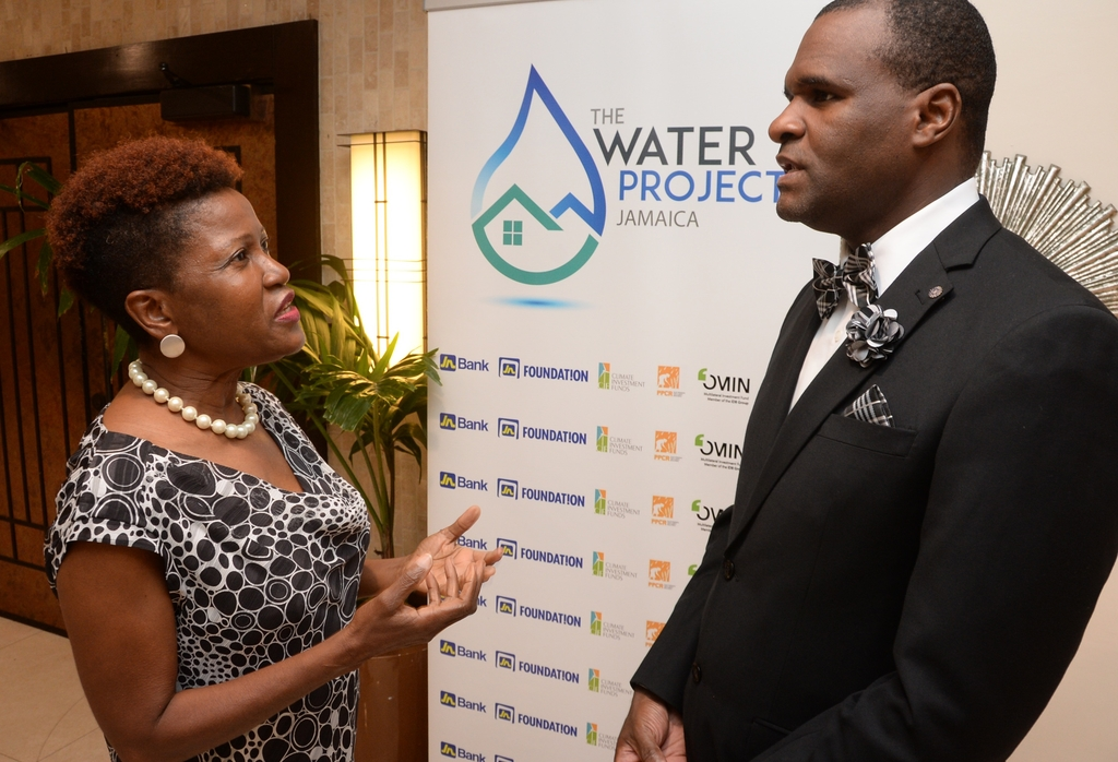 Jacqueline Cameron (left), JN Water Project Manager makes a point to Dwight Ricketts, immediate past president of the Jamaica Institution of Engineers (JIE) at the recently held JIE Awards Gala.