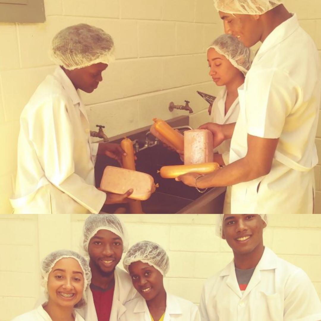 Offre de formation en élaboration de produits agro-alimentaires