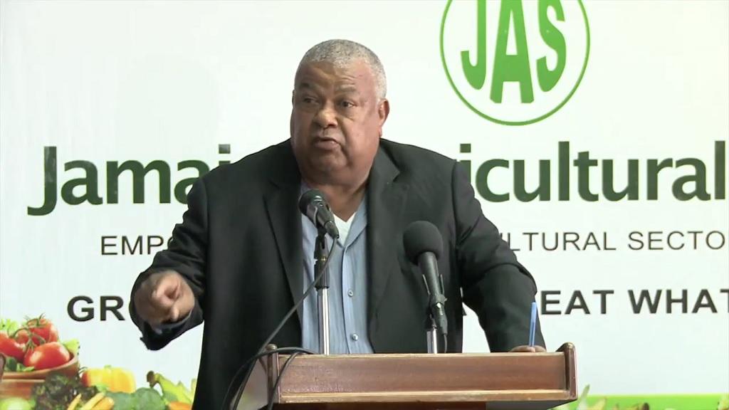 Jamaica Agricultural Society (JAS) President, Lenworth Fulton.