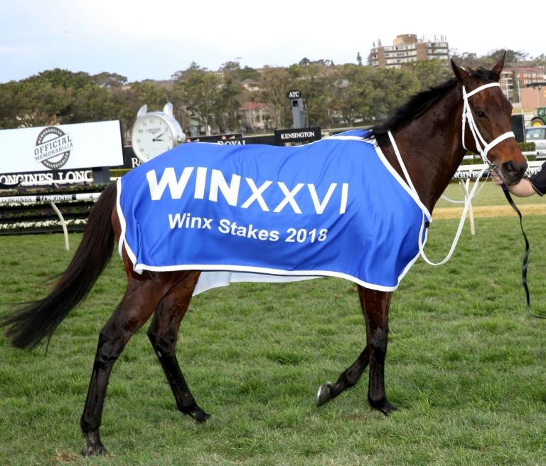 La jument Winx, à l'issue d'une victoire dans une course, le 18 août 2018 à Sydney