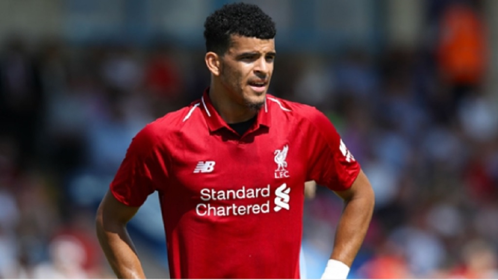 Dominic Solanke in action for Liverpool.